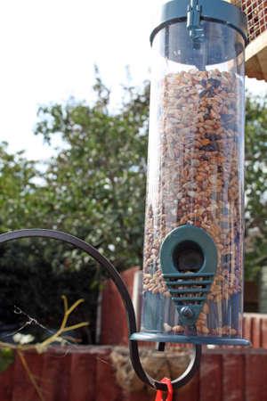 feeder: bird feeder Stock Photo