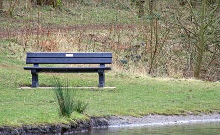 park bench photo