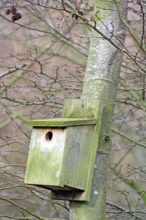 old wooden bird house Stock Photo - 13384086
