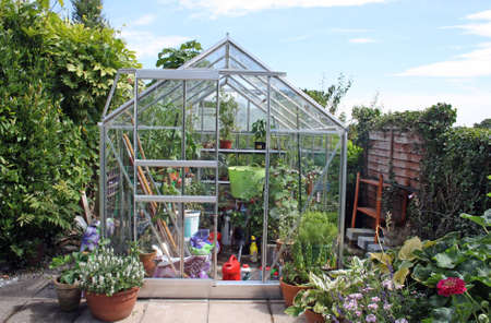 a greenhouse in the summer time
