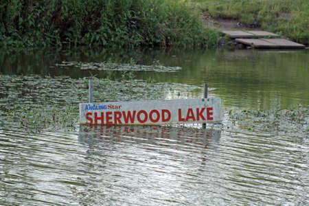 Sherwood lake , fishing lake photo