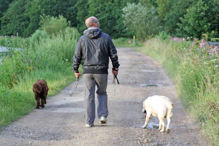 man walking dogs photo
