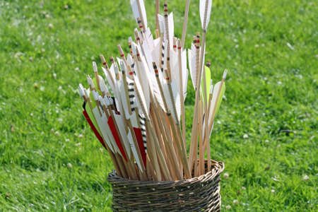 a basket of arrows