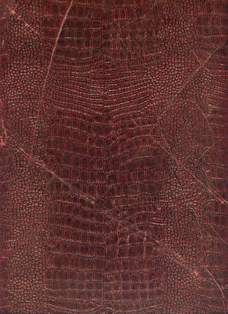 Highly detailed antique book cover close up photo. Great grunge background or grunge layer for your projects photo