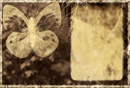 Computer designed highly detailed textured grunge background. Butterfly on textured background with space for your text photo