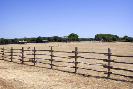 Farm field with an old wooden fence Stock Photo - 3920478