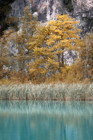 Beautiful landscape of a green lake Stock Photo - 4635360