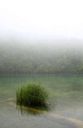 Landscape of a peaceful  river on a foggy day photo