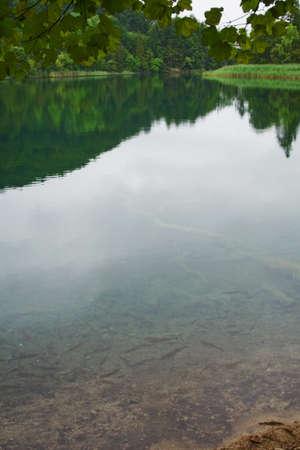 Beautiful landscape of a green lake photo