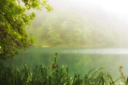 Landscape of a beautiful lake Stock Photo - 11121129