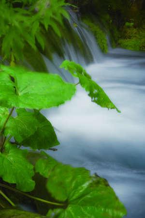 Beautiful waterfalls at Plitvice Lakes National Park , UNESCO World Heritage Center Stock Photo - 16557785