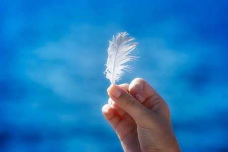 piuma bianca: Mano che regge una piuma davanti a sfondo blu naturale Archivio Fotografico