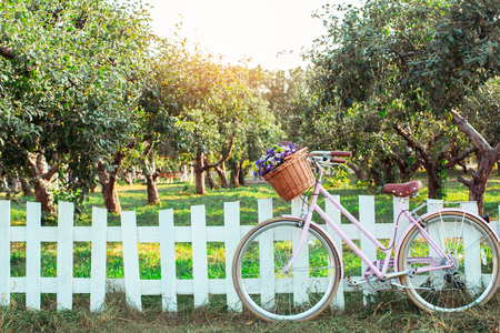 Bicycle with basket of flowers no people outdoors