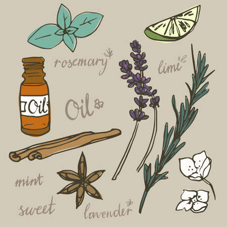 essential oil: Aromatherapy, spa and wellness essential oils doodle vector illustration set