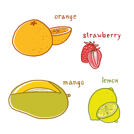Fruit flavors drawings vector set with labels