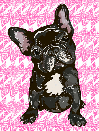 hondenras Franse bulldog Vector Illustratie