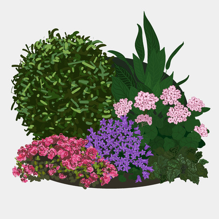 spring bed: Garden landscapes, summer and spring flower bed. Vector flat illustrations