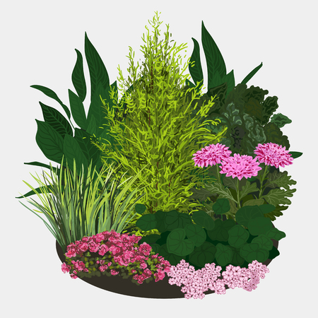 flower bed: Garden landscapes, summer and spring flower bed. Vector flat illustrations