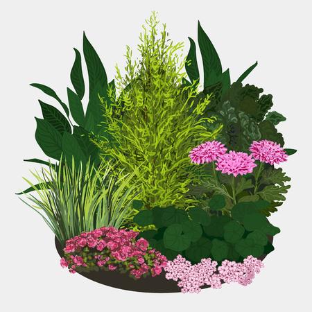spring flower: Garden landscapes, summer and spring flower bed. Vector flat illustrations