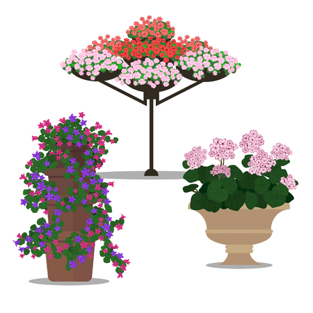 flower bed: Garden landscapes, summer and spring flower bed. Illustration