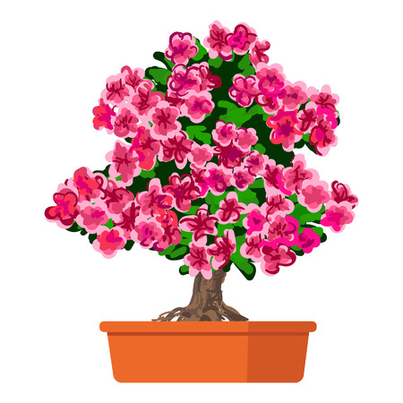 blooming: illustration plant in pot, Blooming tree Azalea.