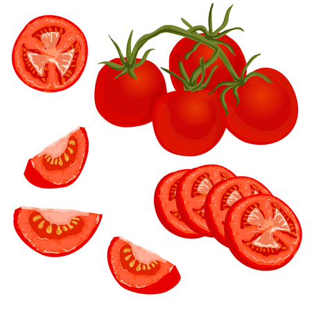 Tomatoes set. illustration of whole and sliced ripe fresh tomatoes on white background, isolated