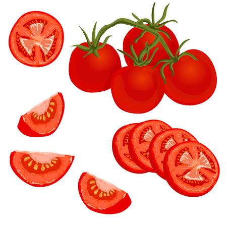 Zestaw pomidorów. ilustracja całych i pokrojonych w plasterki dojrzałych świeżych pomidorów na białym tle, na białym tle
