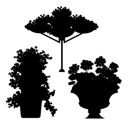 beautification: set of black silhouette plants, flowers and floral arrangements Illustration