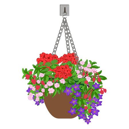 beautification: colorful illustration of hanging pot with flowers. Floral arrangement. Illustration