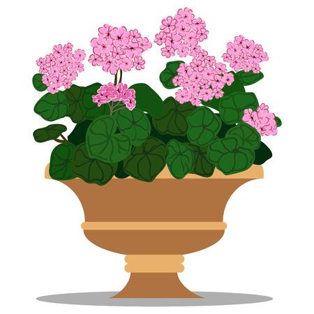 beautification: colorful illustration of floral arrangement in pot.