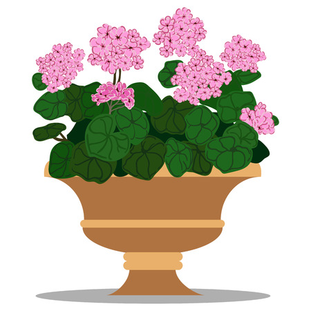 colorful illustration of floral arrangement in pot.