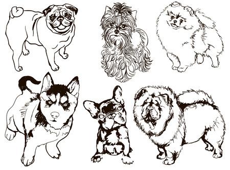 Colorido conjunto de ilustraciones de perros de diferentes razas