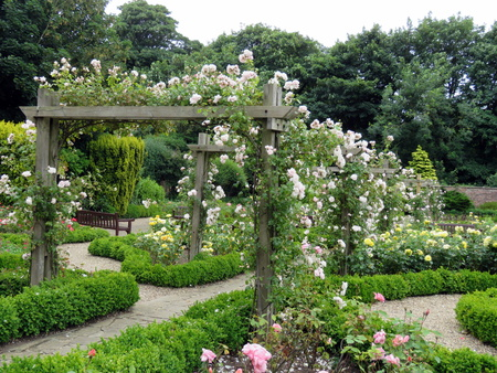 path to romance: Rose garden in summer at Sewerby Park, Bridlington, East Yorkshire, England