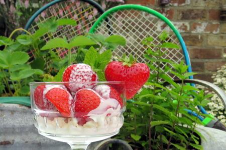 Erdbeeren und Tennis Eine Schale mit Erdbeeren und Sahne vor einer Wanne mit Erdbeerpflanzen und einer Minze Pflanze mit Tennisschläger im Hintergrund.