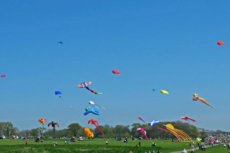 cliff top: A Kite Festival at Bridlington East Yorkshire. Kites flying on Bridlington cliff top at the first Kite Festival on 8th May 2016