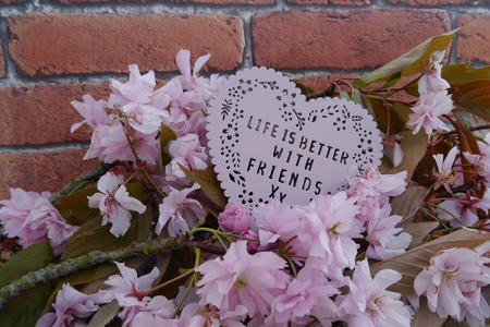 phrases: Heart shaped life is better with friends plaque with a background of pink blossom