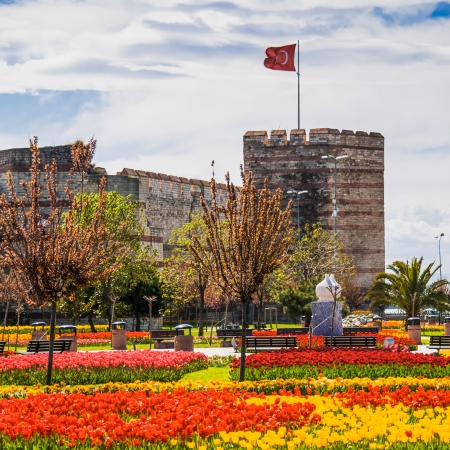 constantinople ancient: The ancient walls of Constantinople, during the Tulip Festival in Istanbul, Turkey.