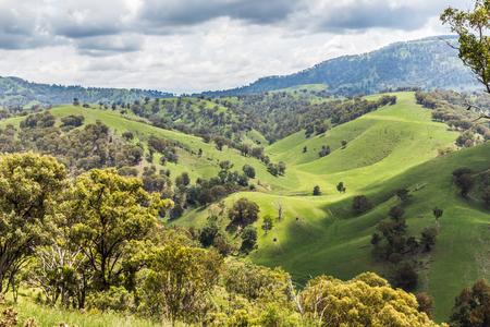 Mening van rollende heuvels in de Hogere Jagersvallei, NSW, Australië