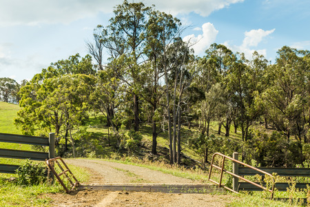 cattle grid: Road through a pasture, with a cattle grid in the foreground. Rural NSW, Australia Stock Photo