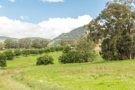 Upper hunter valley
