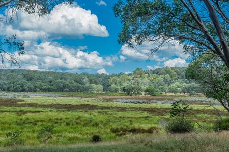 PolBlue Swamps, Barrington Tops, NSW, Australia