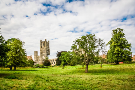 View of Ely Cathedral set among the trees of  Cherry Hill Park