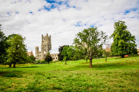 Ely Cathedral seen among the trees of  Cherry Hill Park Stok Fotoğraf