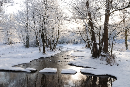 Stepping Stones, Sherbrook Valley, Cannock Chase in the snow