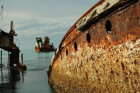 Detail shot of Shipwreaks artificial reef photo