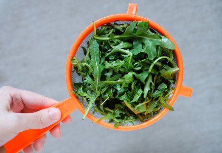 A female hand holds a fresh fragrant rukkola in a colander on a