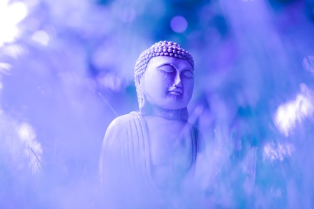 A creative image of a small meditating statue of Buddha on delicate blue-violet colors. Selective focus. Religious symbol of buddhism 写真素材