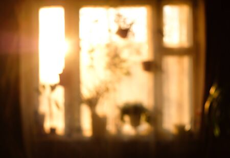 Conceptual blurred image in warm vintage tones of a window with different houseplants at sunset or sunrise.