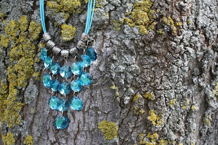 Blue gem necklace against a mossy tree photo