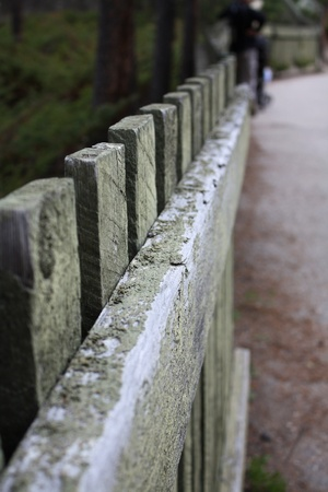 Worn wooden fence along walkway in national park photo